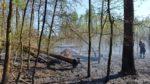 požár - lesní porost - Dolní Slivno - 22.4.2019